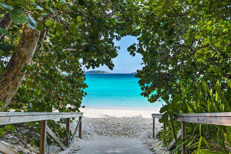 The 5 Best Beaches in St. John, U.S. Virgin Islands
