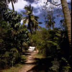 Virgin Islands National Park hiking and camping