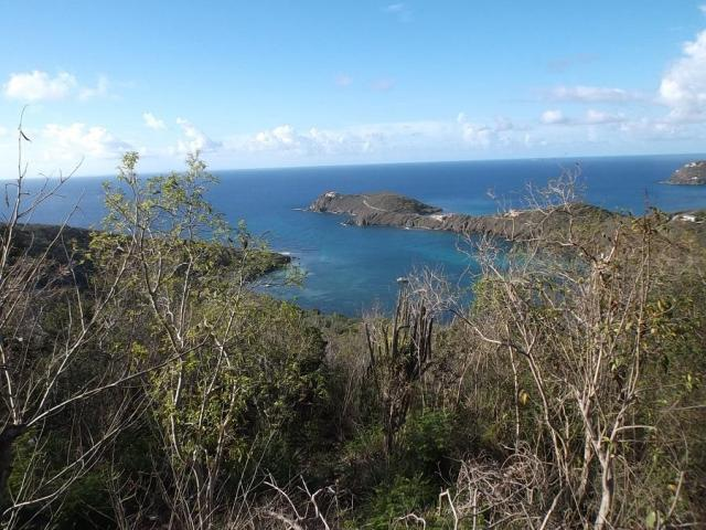 reef bay